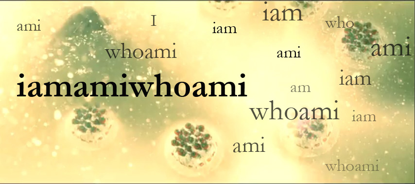 "Cake floating in murky golden liquid surrounded by words ""iam"" ""ami"" ""whoami"""
